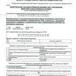 Переименование ФБУ «Морспасслужба Росморечфлота»