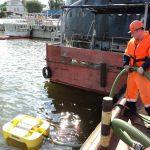 Ликвидация загрязнения нефтепродуктами
